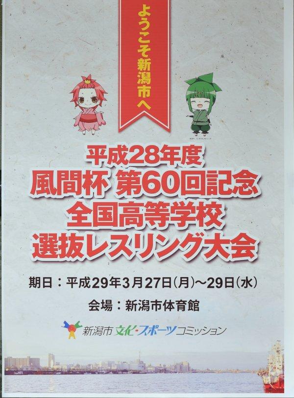 ファイル 3396-1.jpg